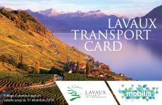 transport-card-2020